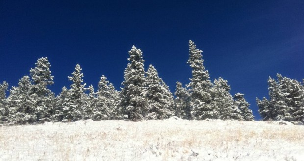 Bragg Creek Provincial Park 620x330 - Exploring the Outdoors in Winter: Five Must-Haves