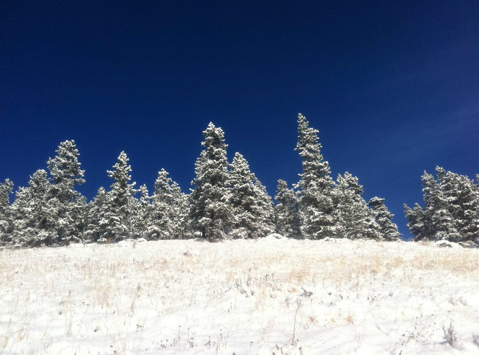 Bragg Creek Provincial Park - Exploring the Outdoors in Winter: Five Must-Haves