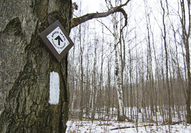 Hiking Trails near Barrie