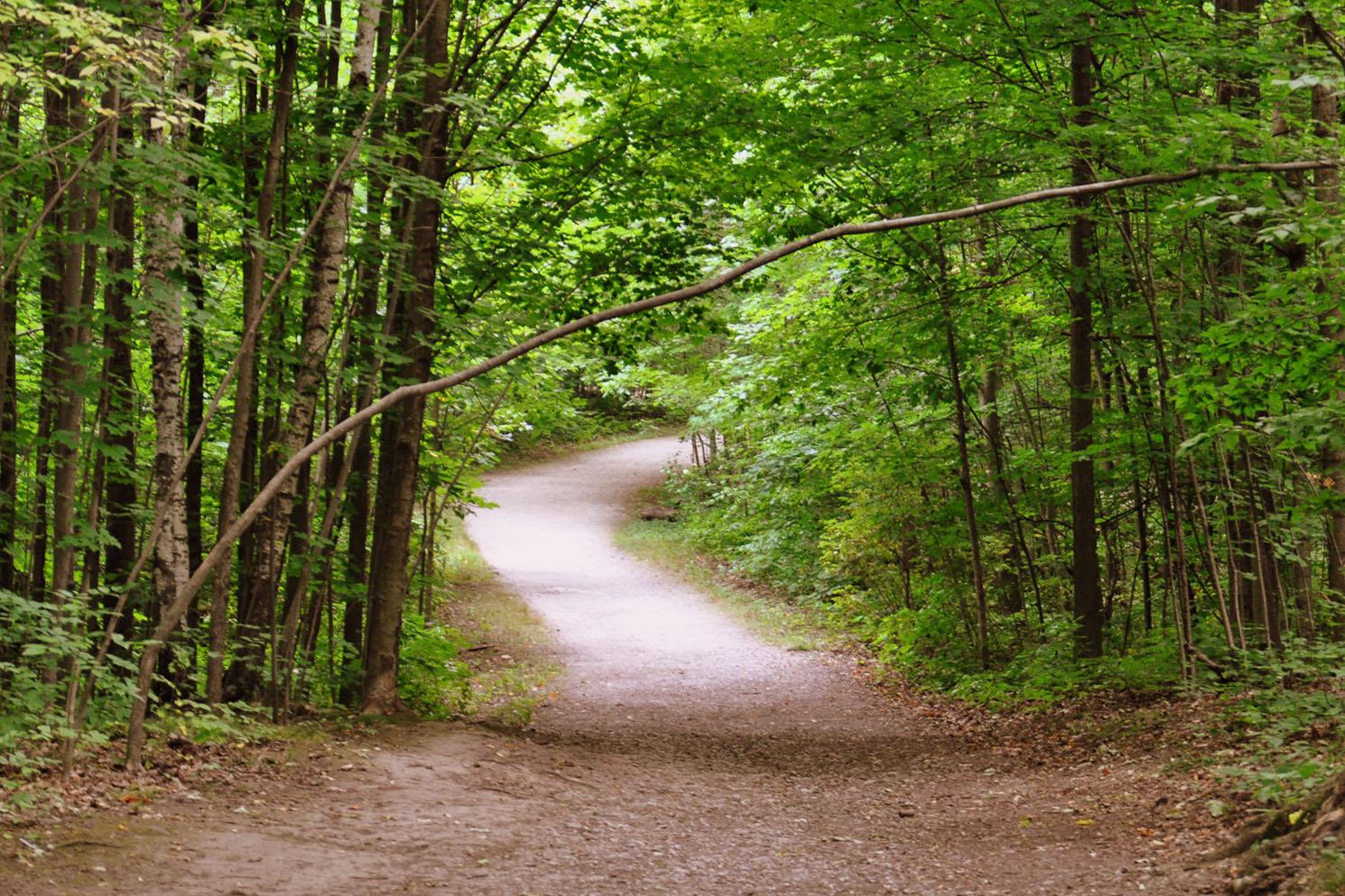 Family Friendly Trails in Burlington Bronte Creek Provincial Park