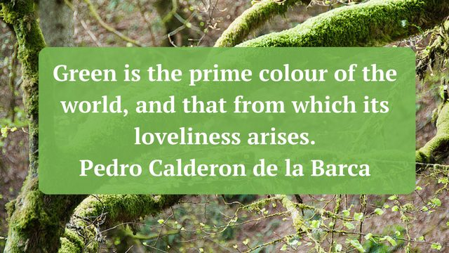 Green is the prime colour of the world and that from which its loveliness arises. Pedro Calderon de la Barca 640x360 - 50 Inspirational Nature Quotes