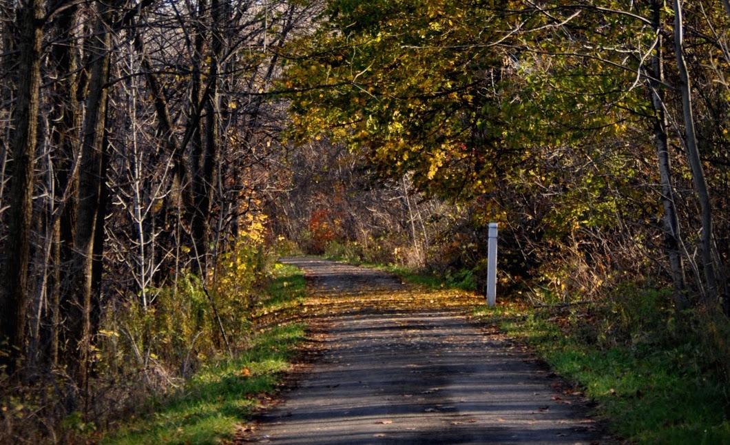 Hiking the Hamilton Rail Trail
