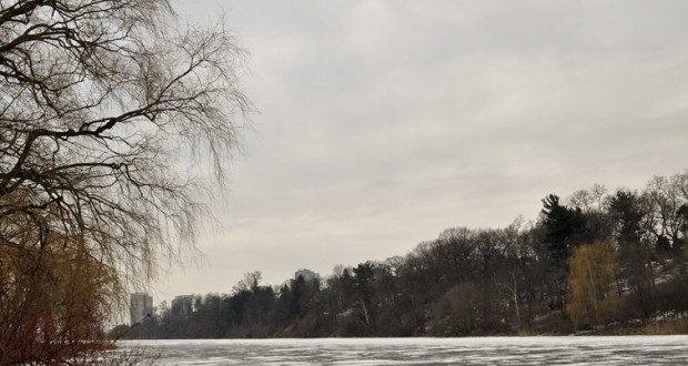 high park in the winter