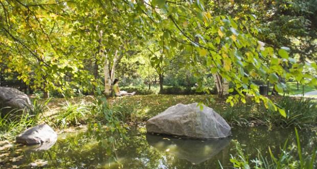 kariya park in Mississauga
