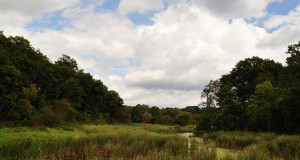 Hendrie Valley