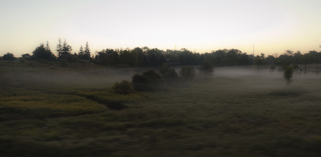 Misty morning in the country1 - Taking photos from a moving car