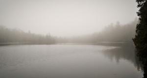 NEW spring fog on Crawford Lake Conservation Area 300x160 - Crawford Lake Conservation Area in Early Spring