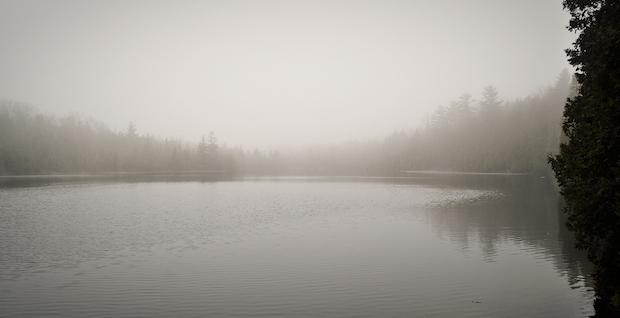 NEW spring fog on Crawford Lake Conservation Area - Hiking at Crawford Lake Conservation Area