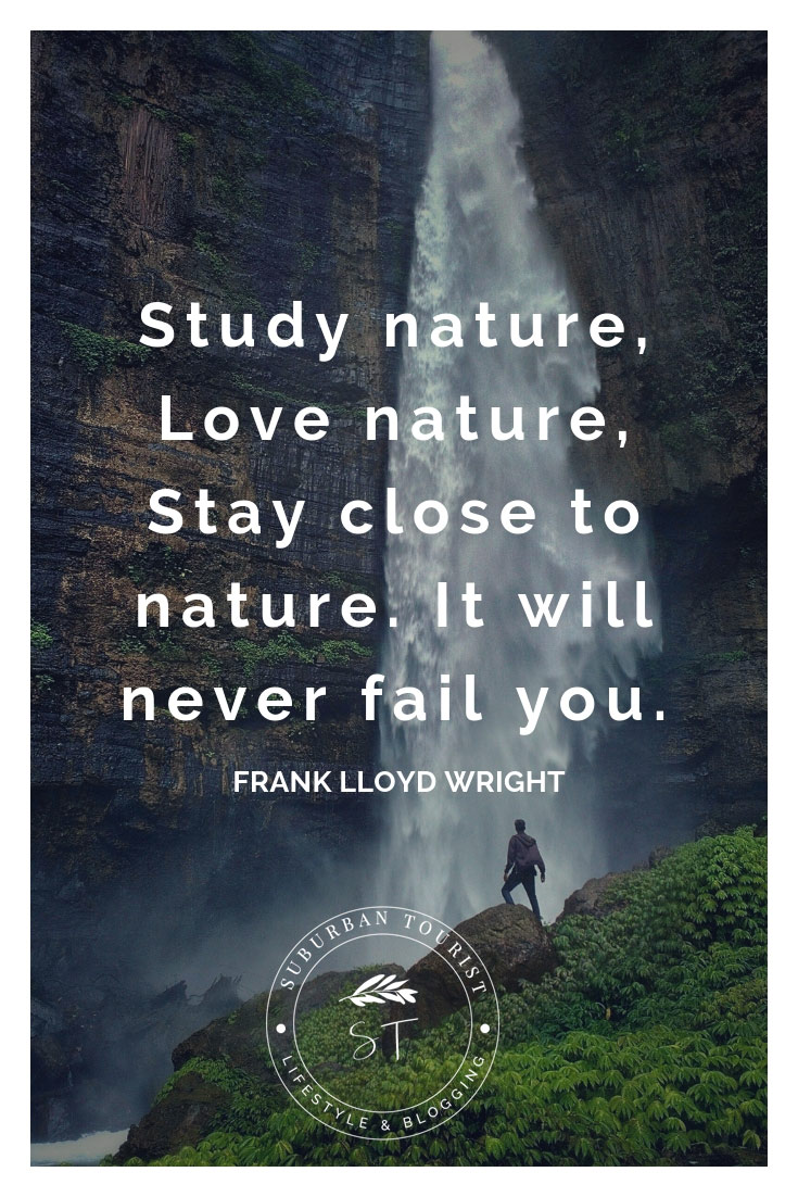 nature quotes inspirational quote inspiring deep inspire wet into rain hike roger miller others walk