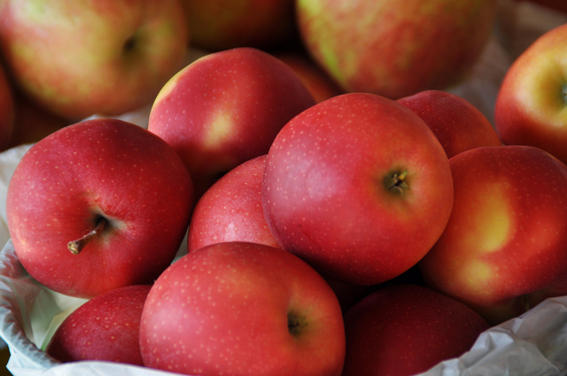 Ontario red apples - Pick Your Own Apples in Ontario: A Fall Tradition