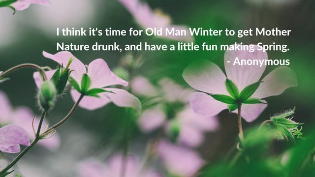 Spring humour. 50 Inspirational Nature and Outdoor Quotes