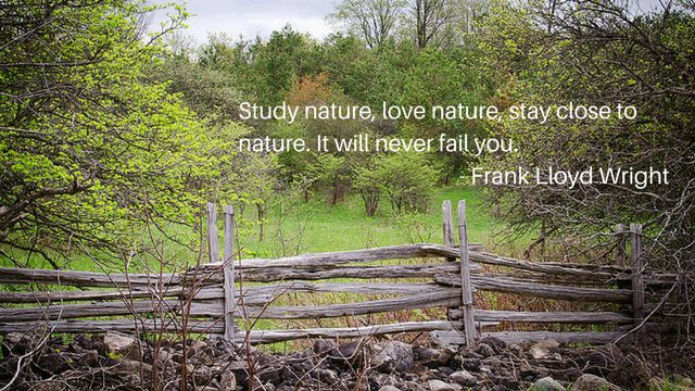 Nature Quotes - Outdoors Quotes