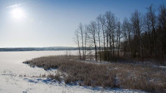 Winter north of Toronto